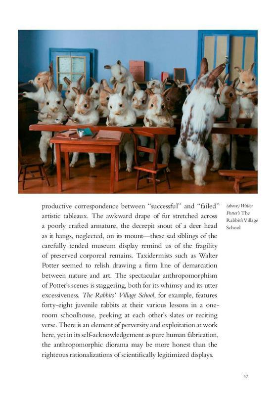Morbid Anatomy Anthology Page Creepy Rabbits